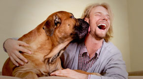 Owning a Dog Linked to Better Heart Health